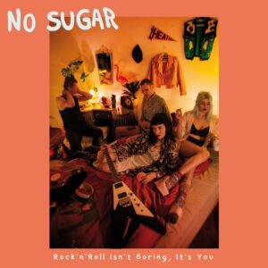 No Sugar – Rock'n'Roll Isn't Boring, It's You LP